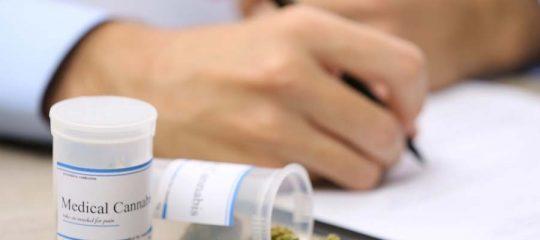 L'utilisation du cannabis médical dans le secteur de la santé en Suisse